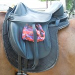 Sacks shown on saddle